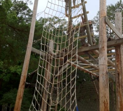 Basic Training Climbing net